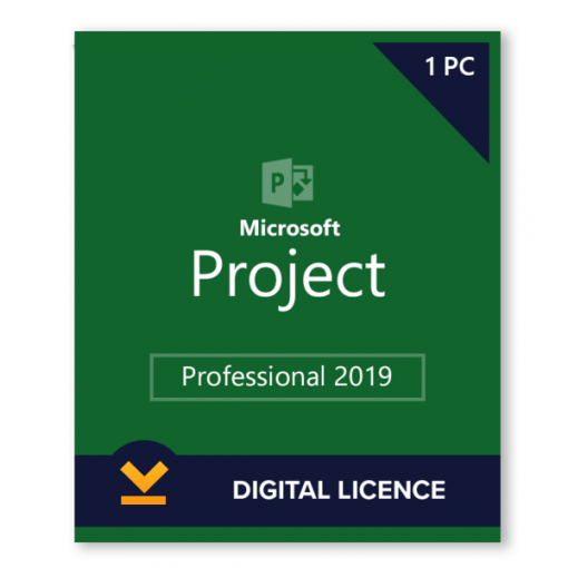 Project 2019 license