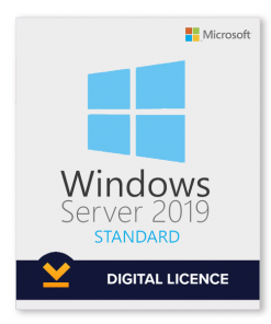 Windows Server 2019 Standard License