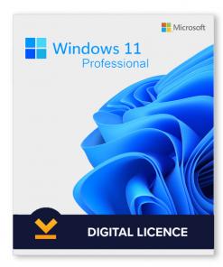 Windows 11 Professional License